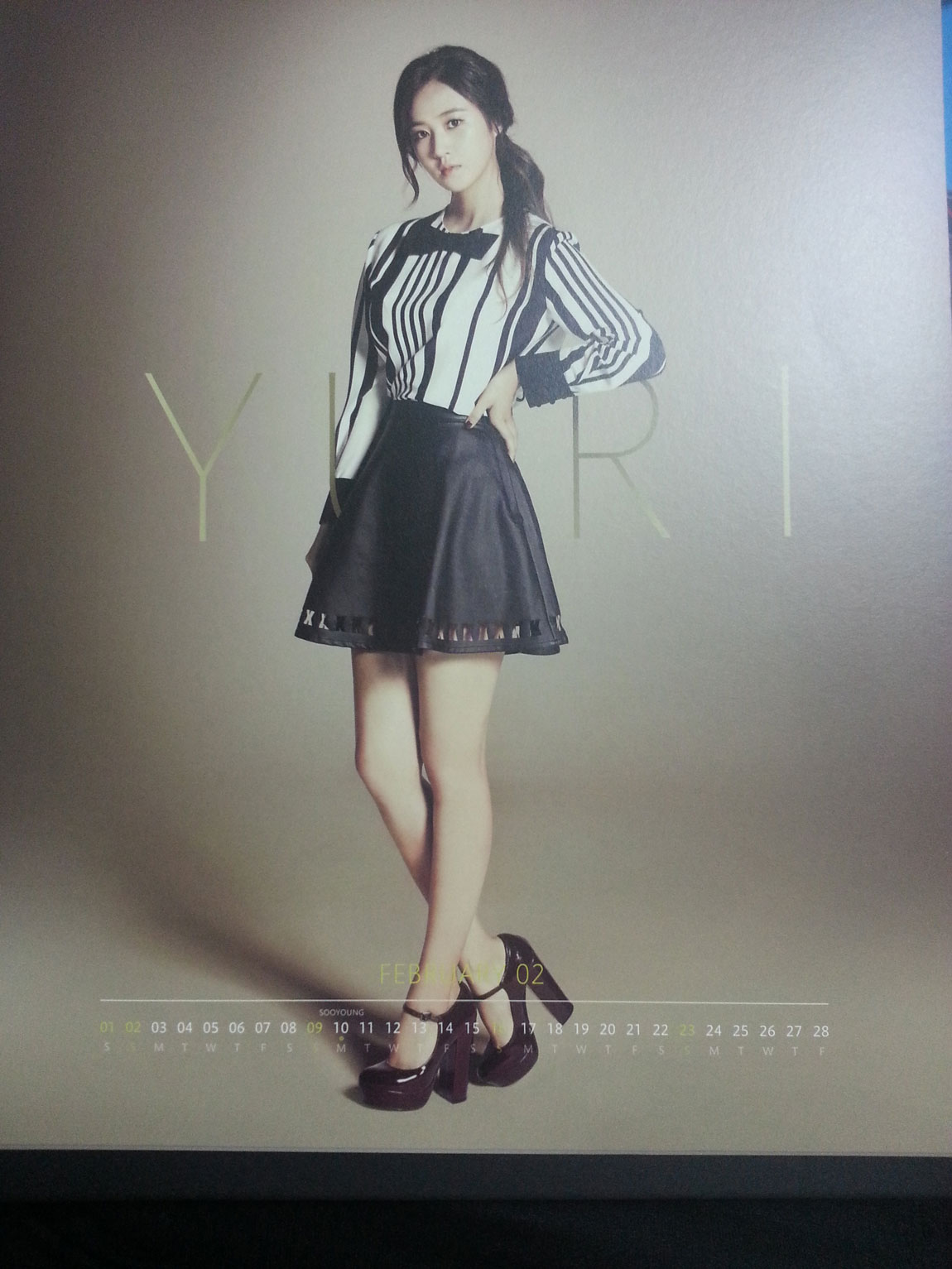 Girls Generation February 2014 calendar